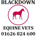 blackdownequine.co.uk logo