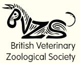 bvzs.org logo
