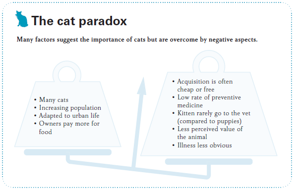The Cat Paradox